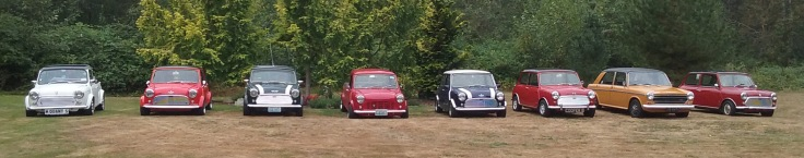 minis-cropped